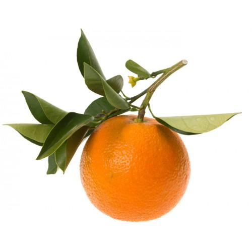Ulei Esential Portocală Amară, Orange Bitter 15ml [1]