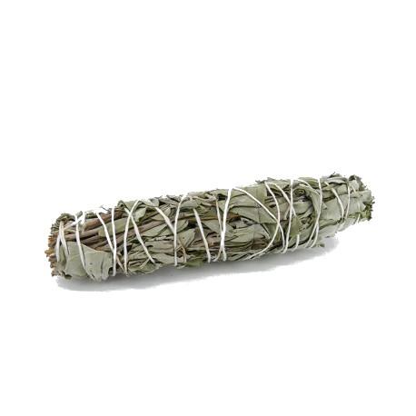 White Sage Smudge - Salvie manunchi [0]