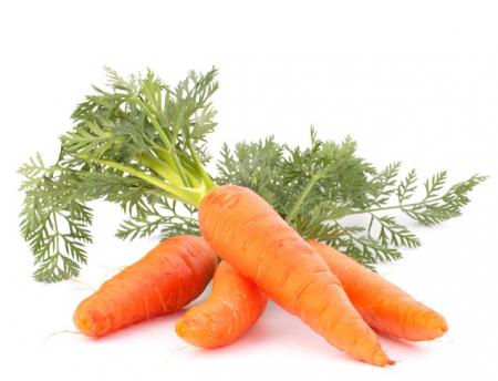 Ulei Esential Morcov Seminţe, Carrot Seed 15ml [1]
