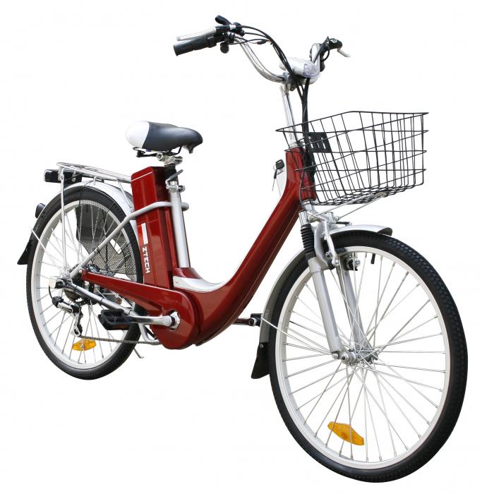Bicicleta electrica ZT-08 [1]