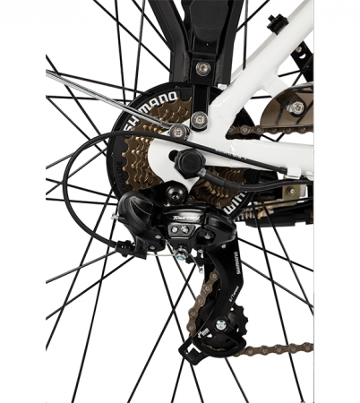 Bicicleta electrica ZT-34 Verona [1]