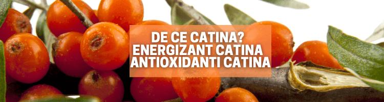 De ce catina? | Energizant Catina | Antioxidanti Catina