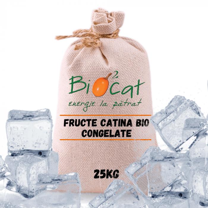 Fructe de catina ecologice 25kg - produs congelat [0]