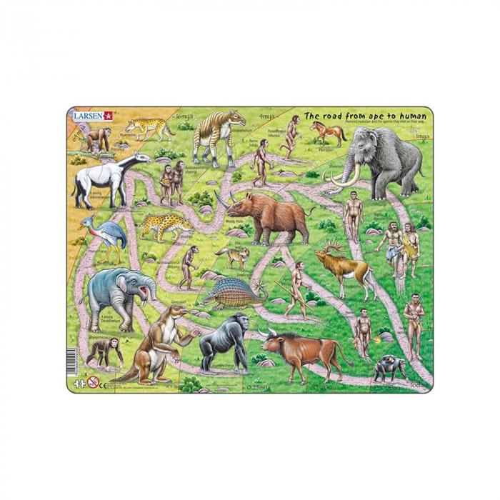 Puzzle maxi Drumul de la maimuta la om, orientare tip vedere, 83 de piese, Larsen [0]