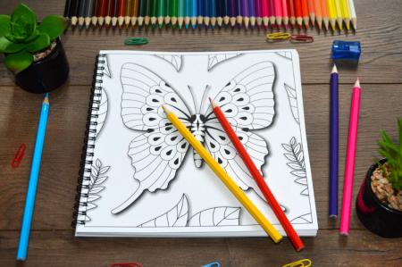 Fluturi 3D [3]
