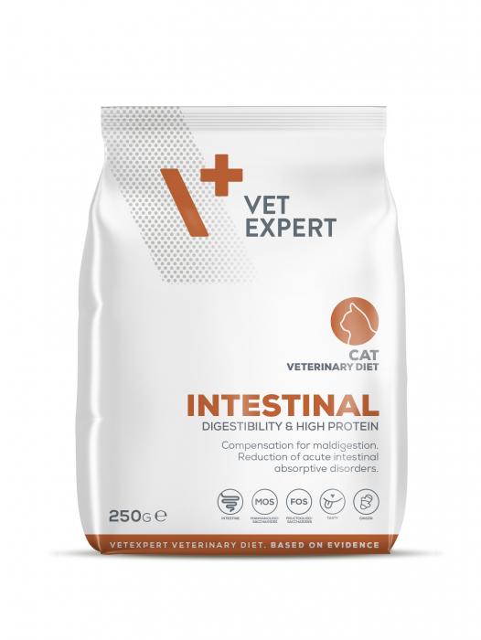 4T Dieta Veterinara INTESTINAL CAT, VetExpert, 250g [0]