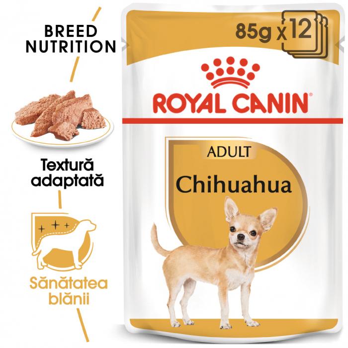 Royal Canin Chihuahua Adult, bax hrană umedă câini (pate)12 x 85 g [0]