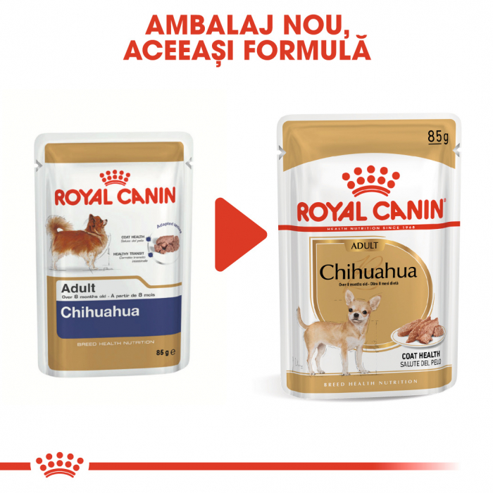 Royal Canin Chihuahua Adult, bax hrană umedă câini (pate)12 x 85 g [3]