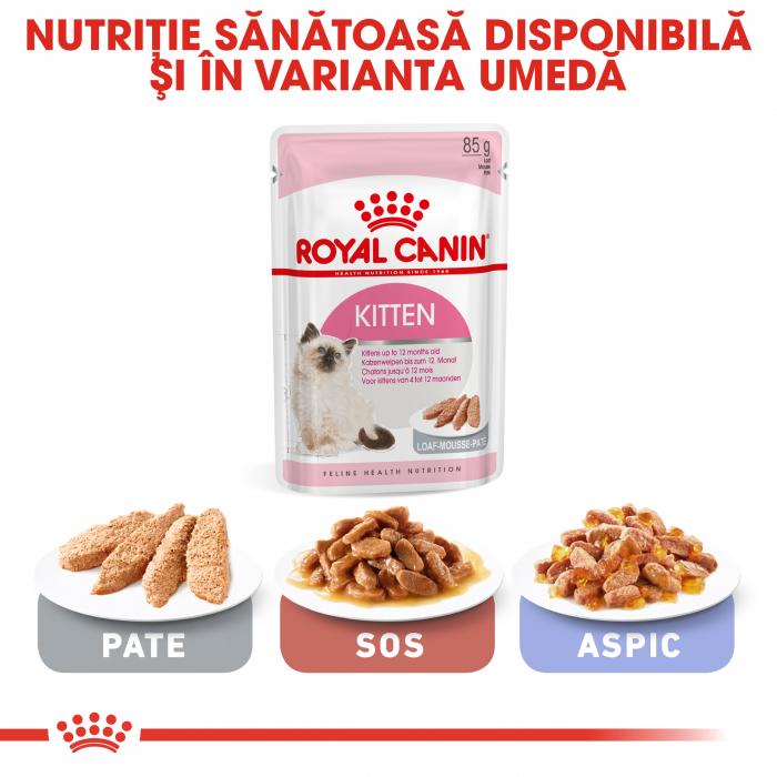 Royal Canin Kitten, hrană uscată pisici junior, 2 kg [5]