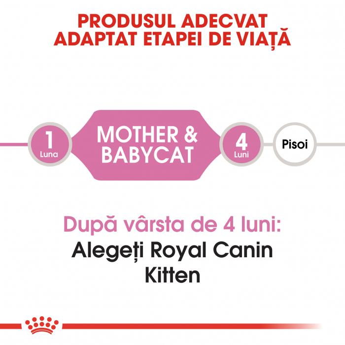 Royal Canin Mother & BabyCat, hrană uscată pisici, mama și puiul 2 kg [1]