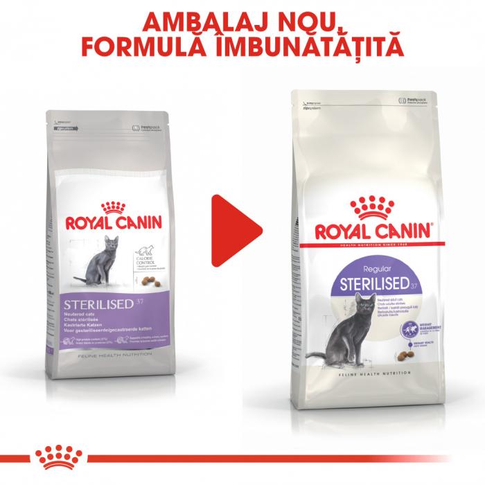 ROYAL CANIN STERILISED,hrană uscată pisici sterilizate, 4 kg [6]