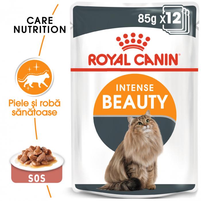 Royal Canin Intense Beauty Care Adult, plic hrană umedă pisici, piele și blană, (în sos), 12 x 85 g [0]