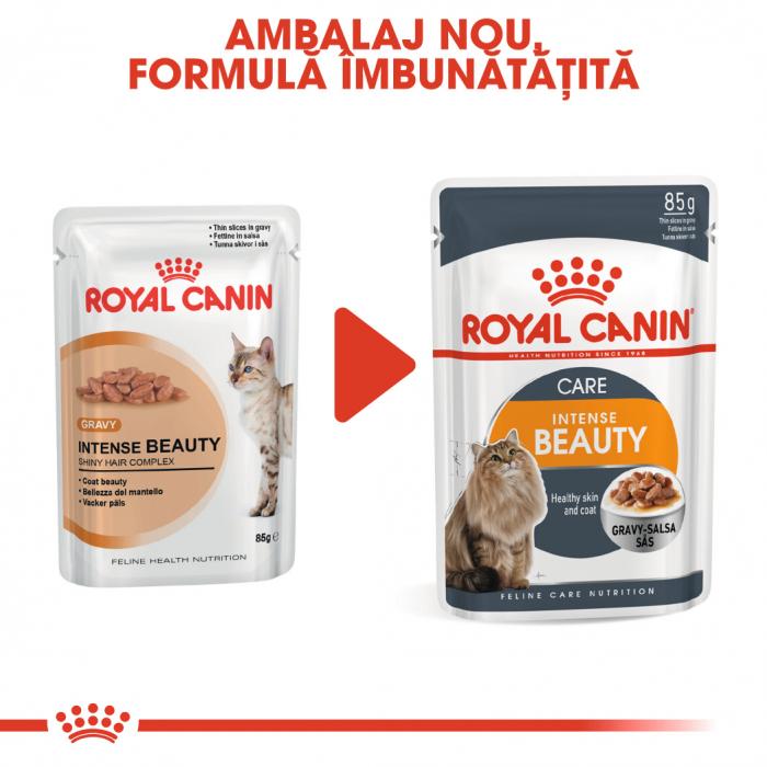 Royal Canin Intense Beauty Care Adult, plic hrană umedă pisici, piele și blană, (în sos), 12 x 85 g [1]