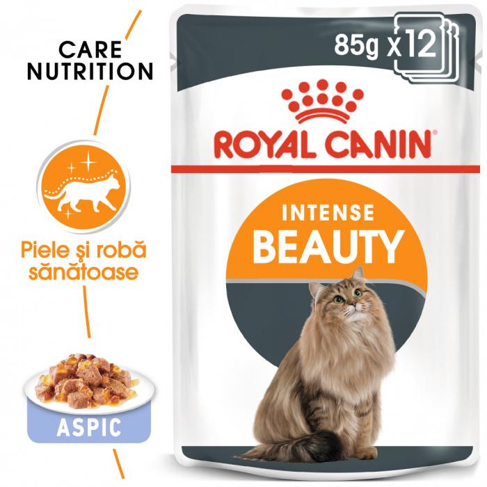Royal Canin Intense Beauty Care Adult, plic hrană umedă pisici, piele și blană, (în aspic), 12 x 85 g [0]