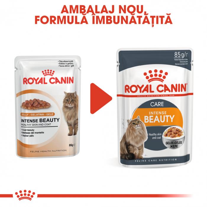 Royal Canin Intense Beauty Care Adult, plic hrană umedă pisici, piele și blană, (în aspic), 12 x 85 g [1]