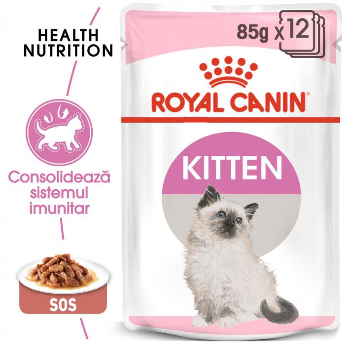 Royal Canin Kitten, bax hrană umedă pisici, (în sos), 12 x 85 g [0]