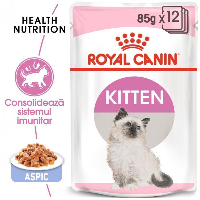 Royal Canin Kitten, bax hrană umedă pisici, (în aspic), 12 x 85 g [0]