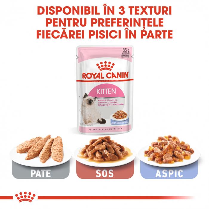 Royal Canin Kitten, bax hrană umedă pisici, (în aspic), 12 x 85 g [4]
