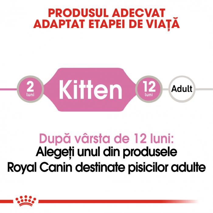 Royal Canin Kitten, bax hrană umeda pisici, (pate) 12 x 85 g [1]