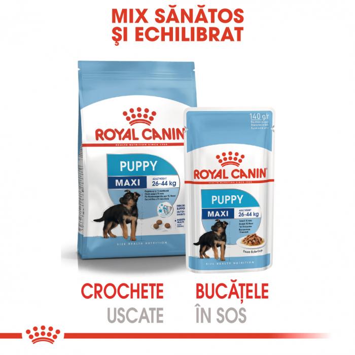 Royal Canin Maxi Puppy, bax hrană umedă câini junior, (în sos) 10 x 140 g [4]