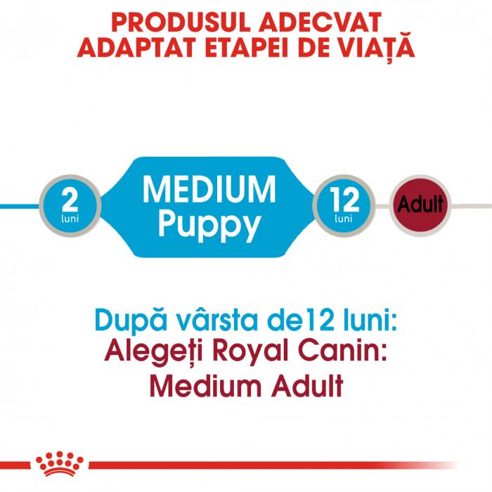 Royal Canin Medium Puppy, plic hrană umedă câini junior, (în sos),  10 x 140 g [1]