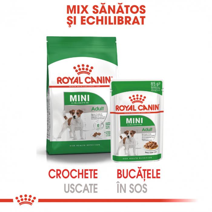 Royal Canin Mini Adult, plic hrană umedă câini, (în sos),  12 x 85 g [4]
