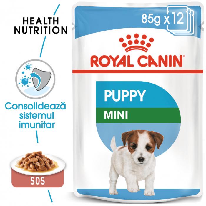 Royal Canin Mini Puppy, plic hrană umedă câini junior (în sos), 12 x 85 g [0]