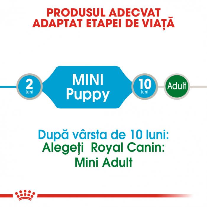 Royal Canin Mini Puppy, plic hrană umedă câini junior (în sos), 12 x 85 g [1]