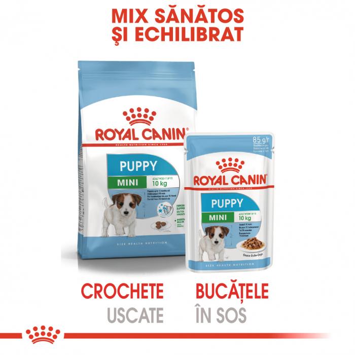 Royal Canin Mini Puppy, plic hrană umedă câini junior (în sos), 12 x 85 g [4]