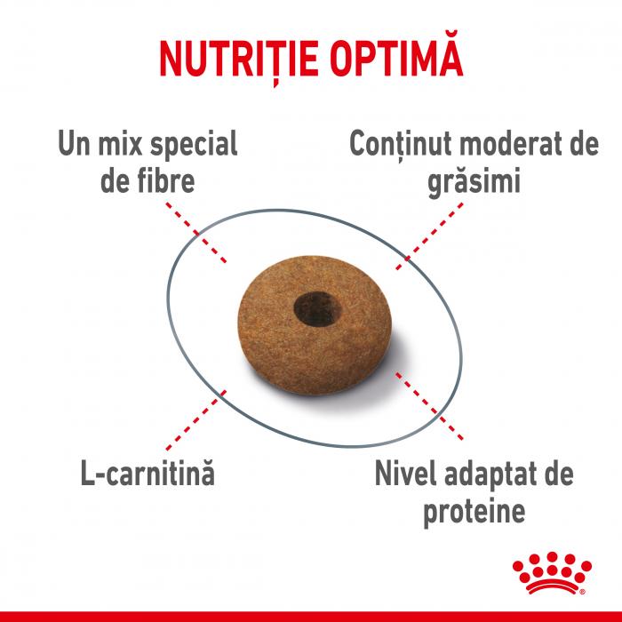 Royal Canin Appetite Control Care, hrană uscată pisici, adult sterilizat, reglarea apetitului, 400G [2]