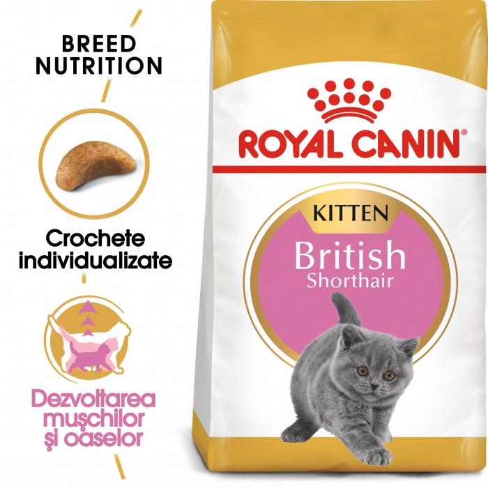 Royal Canin British Shorthair Kitten, hrană uscată pisici junior, 2 kg [0]