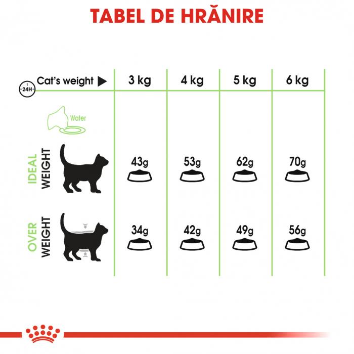 Royal Canin Digestive Care Adult, hrană uscată pisici, confort digestiv, 2 kg [4]