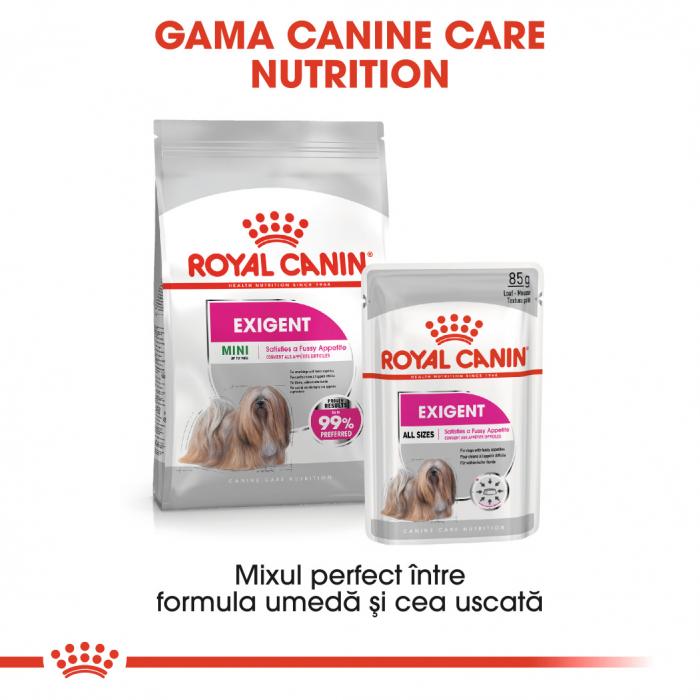 Royal Canin Exigent Adult, plic hrană umedă câini, apetit capricios, (pate), 85G [3]