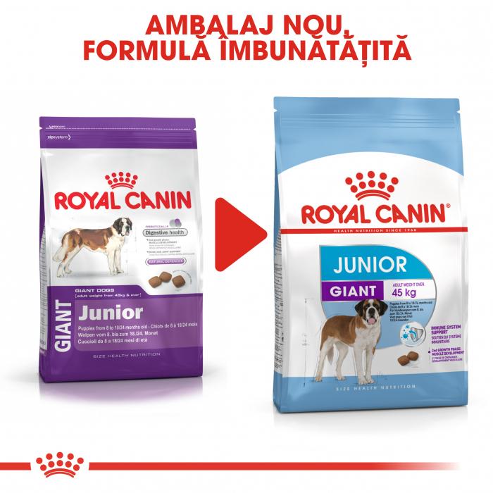 Royal Canin Giant Junior, hrană uscată câini junior, etapa 2 de creștere, 3.5 kg [4]