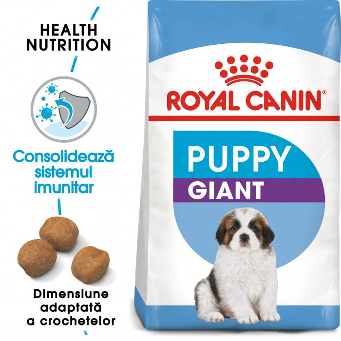 Royal Canin Giant Puppy, hrană uscată câini junior, etapa 1 de creștere , 1 kg [0]