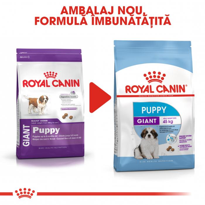 Royal Canin Giant Puppy, hrană uscată câini junior, etapa 1 de creștere , 15 kg [4]