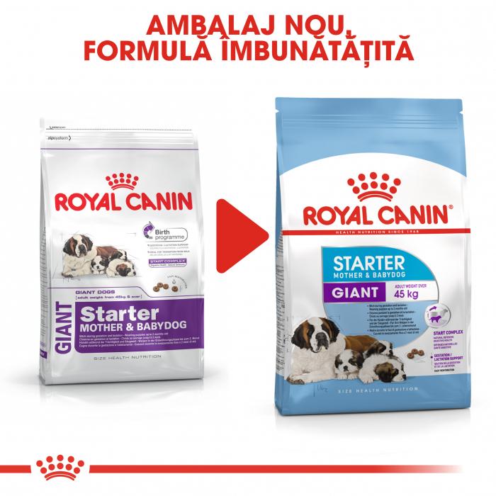 Royal Canin Giant Starter Mother & BabyDog, mama și puiul, hrană uscată câini,15 kg [4]