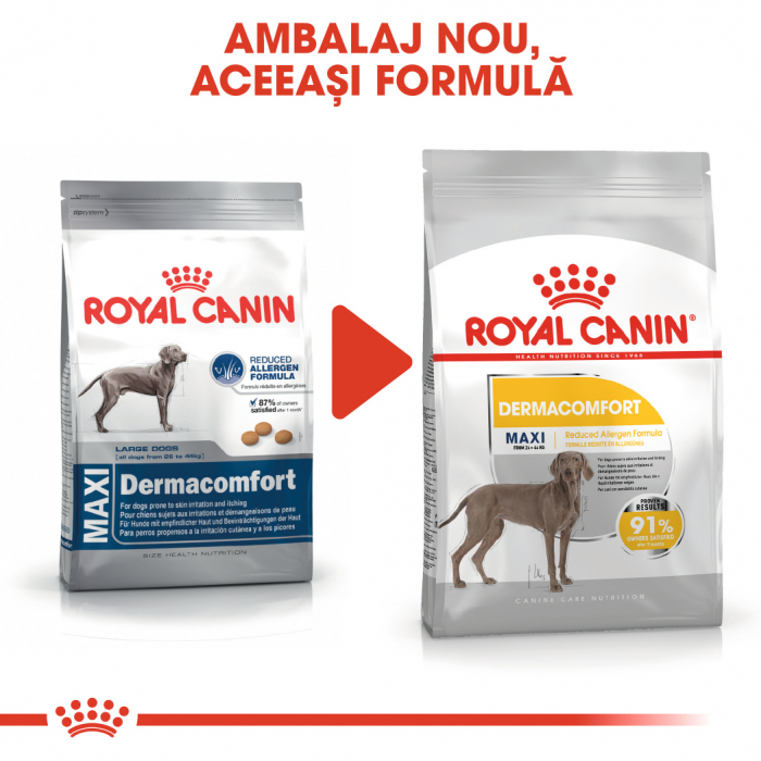 Royal Canin Maxi Dermacomfort, hrană uscată câini, prevenirea iritațiilor pielii, 10KG [1]