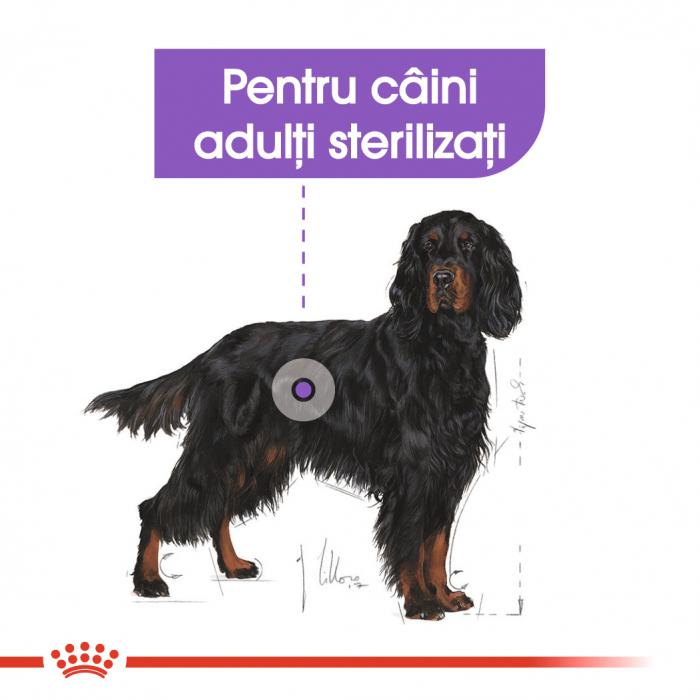 Royal Canin Maxi Sterilised Adult, hrană uscată câini sterilizați, 3KG [3]