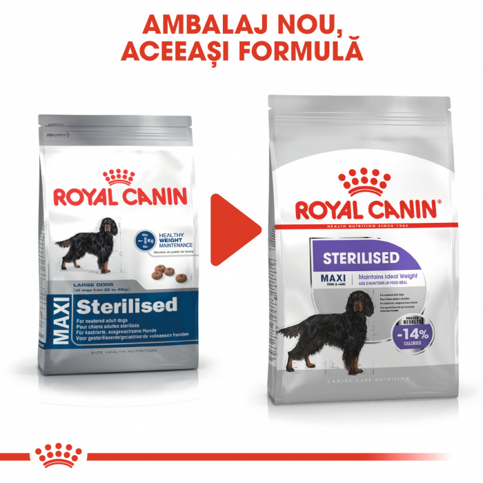 Royal Canin Maxi Sterilised Adult, hrană uscată câini sterilizați, 3KG [1]