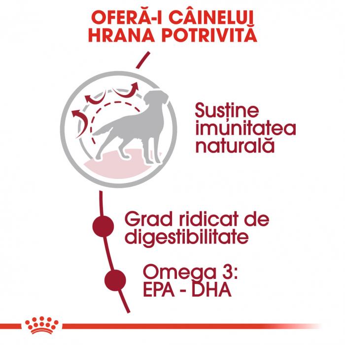 Royal Canin Medium Adult, hrană uscată câini,  4 kg [3]