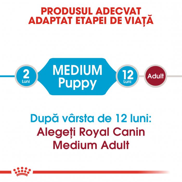 Royal Canin Medium Puppy, hrană uscată câini junior, 4 kg [1]