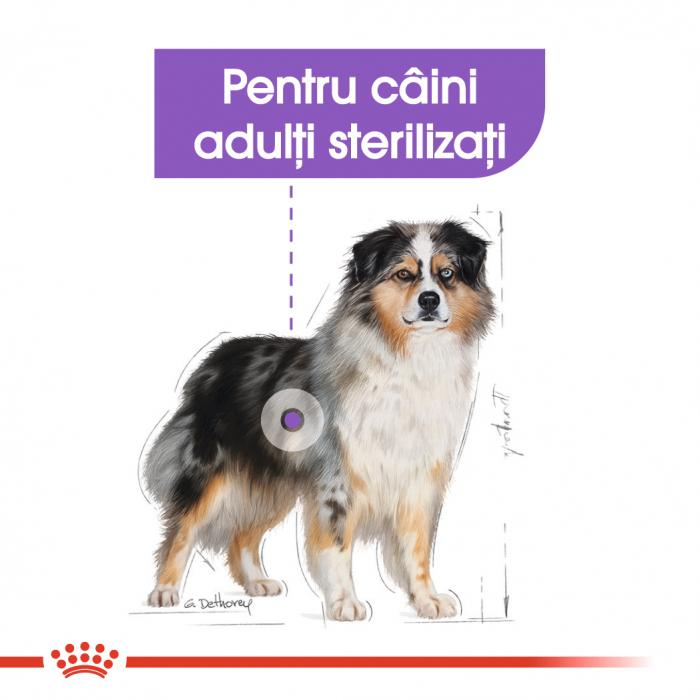 Royal Canin Medium Sterilised Adult, hrană uscată câini sterilizați, 10KG [3]