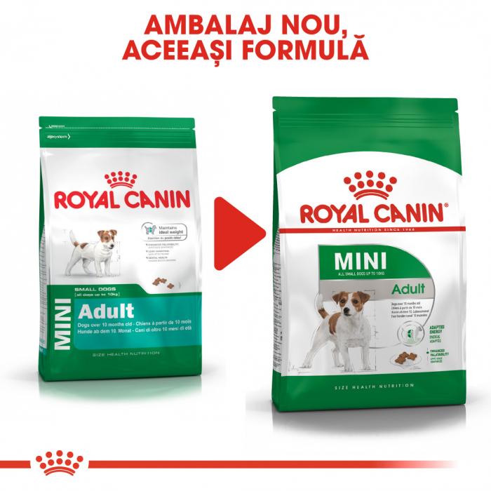 Royal Canin Mini Adult, hrană uscată câini,  4 kg [5]