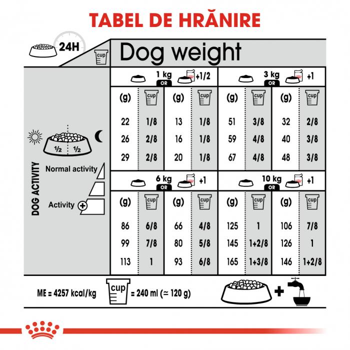 Royal Canin Mini Digestive Care, hrană uscată câini, confort digestiv, 1KG [6]