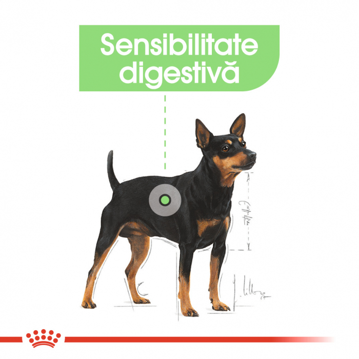 Royal Canin Mini Digestive Care, hrană uscată câini, confort digestiv, 3Kg [2]
