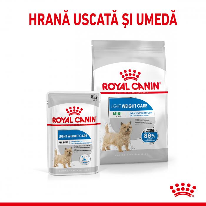 Royal Canin Mini Light Weight Care Adult, hrană uscată câini, managementul greutății, 8Kg [4]