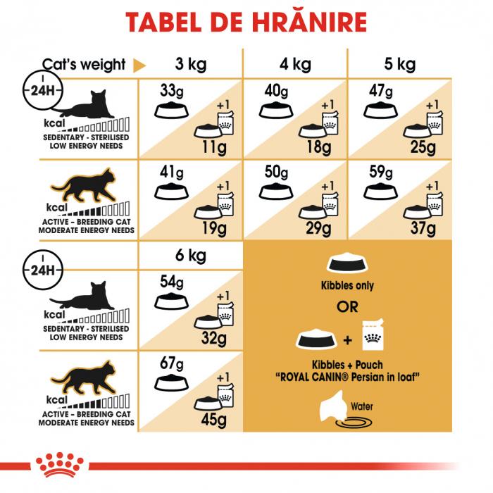 Royal Canin Persian Adult, hrană uscată pisici, 400 g [4]