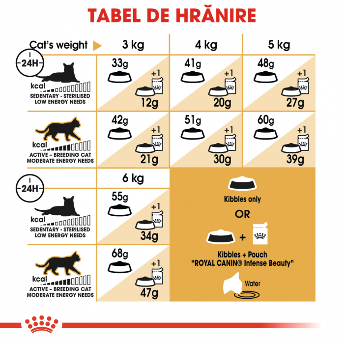 Royal Canin Siamese Adult, hrană uscată pisici 2 kg [4]