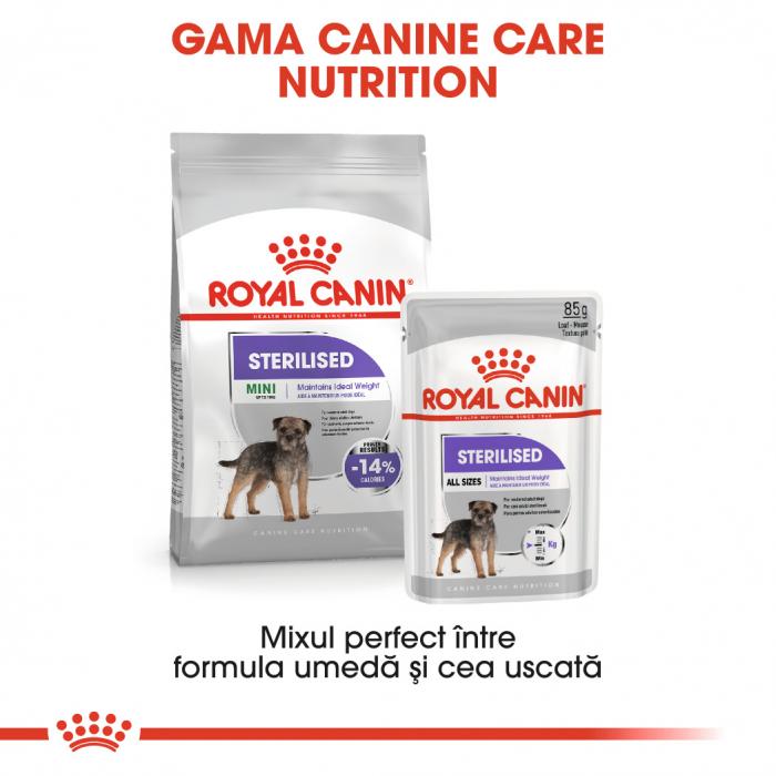 Royal Canin Sterilised Adult, bax hrană umedă câini sterilizați, (pate), 12X85G [4]